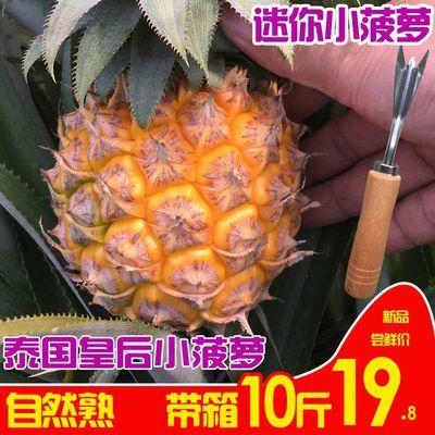 泰国小菠萝迷你香水小菠萝新鲜水果皇后非凤梨零食10斤/8斤/5斤