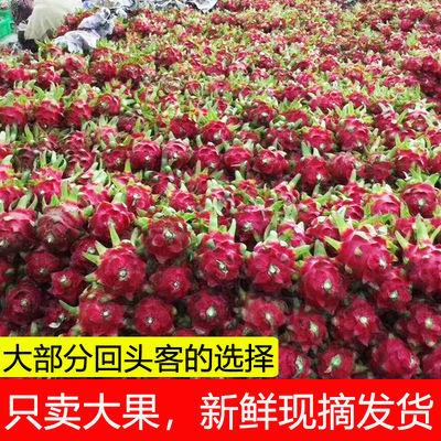 批发红心火龙果大果5斤当季新鲜水果2/4斤热带红肉红龙果3个整箱