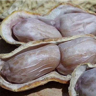 福建龙岩水煮白晒盐咸干花生330g1斤2斤3斤蒜香五香咸酥花生特产