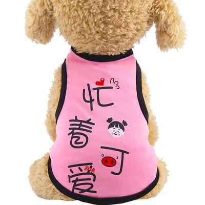 猫咪衣服夏季薄款狗狗衣服春装泰迪衣服宠物服饰小猫衣服可爱搞笑