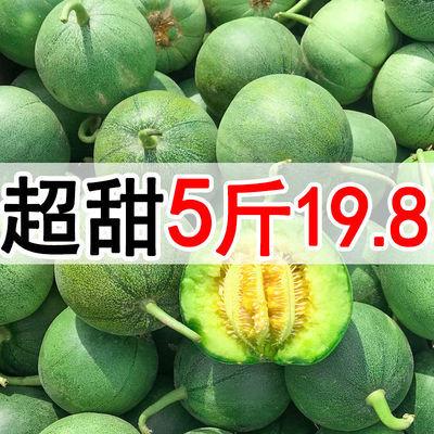 绿宝甜瓜水果新鲜当季整箱香瓜5斤包邮时令水果脆瓜绿宝石