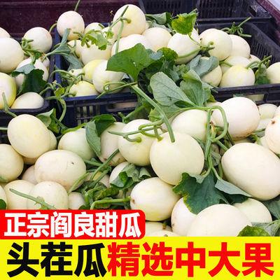 现摘陕西阎良甜瓜白皮蜜瓜当季新鲜水果应季香瓜2/5/10斤整箱批发