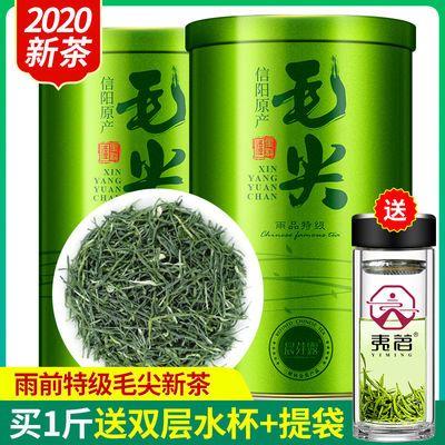 【一斤送水杯】信阳毛尖2020新茶叶绿茶特级浓香型毛尖绿茶250克