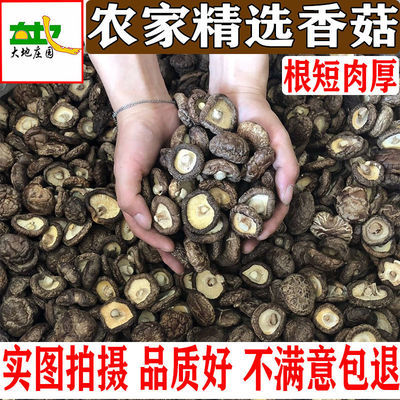 新货野生蘑菇冬菇无根土特产山货散装包邮香菇干货特级干香菇100g