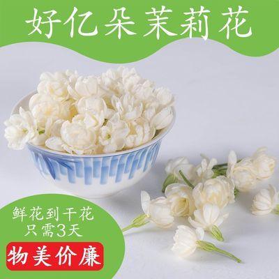 39026/横县特产茉莉花干花草茶新鲜烘干茉莉花茶叶散装安神浓郁天然花香