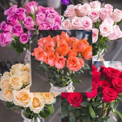 百合鲜花直批包邮云南昆明基地发香水百合批发直供速递同城玫瑰花
