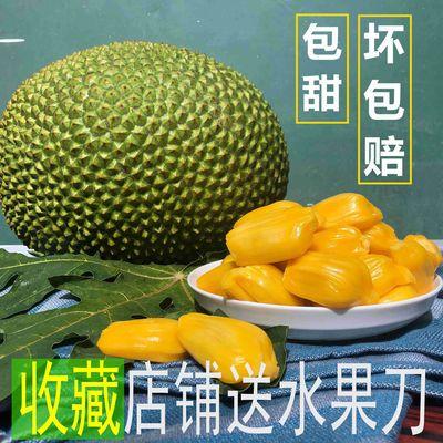 海南三亚菠萝蜜 新鲜水果干苞木菠萝一个 坏包赔少重包赔 菠萝蜜