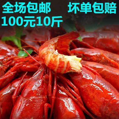 【麻辣小龙虾】10斤装全场包邮 麻辣 蒜泥 十三香各种口味龙虾