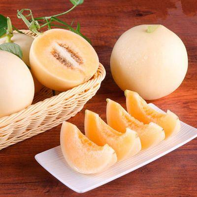 阎良甜瓜白皮甜瓜蜜瓜脆甜香瓜现摘孕妇新鲜水果非哈密瓜陕西甜瓜