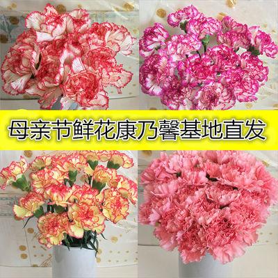 香水百合花鲜花花束真花云南玫瑰向日葵混搭生日礼物批发康乃馨