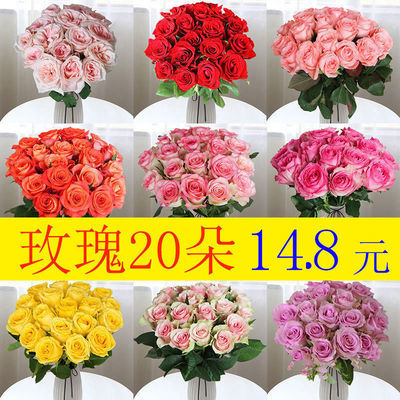 【损坏包赔】香水百合花鲜花批发云南真花家用玫瑰花向日葵小雏菊