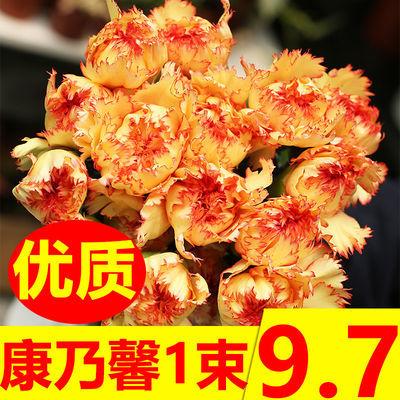 康乃馨鲜花花束真花混搭向日葵批发康乃馨香水百合鲜花送老师礼物