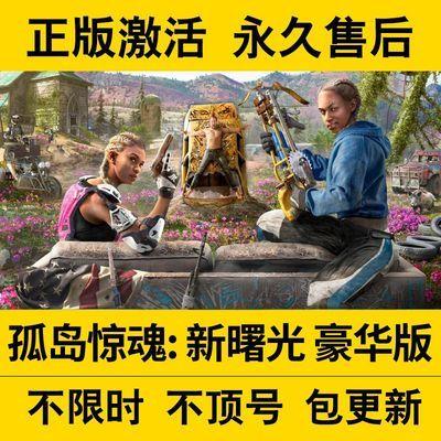 PC中文Steam正版离线 孤岛惊魂 新曙光/新黎明 Far Cry New Dawn