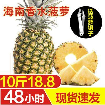 【10斤特价】海南新鲜大菠萝10斤装/5斤/2个装手撕菠萝非凤梨水果