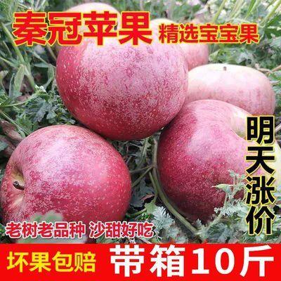 陕西秦冠苹果水果10斤包邮水果新鲜粉面非花牛苹果冰糖心红富士