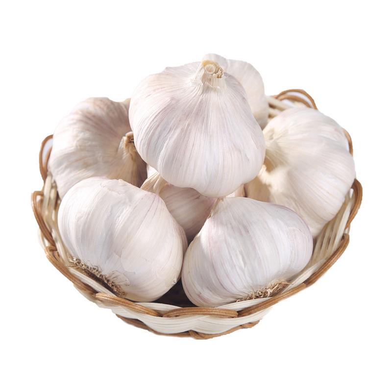干大蒜头农家自种10斤5斤2斤紫皮白皮大蒜头批发特价蔬菜包邮速发