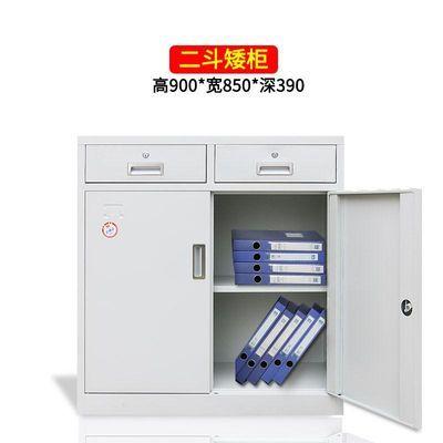 办公文件柜铁皮柜子资料柜档案柜储物柜小柜子家用矮柜工具柜带锁