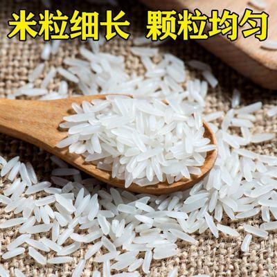 当季软香新米优质农家自产大米5kg/10斤长粒香贡米不抛光丝苗米