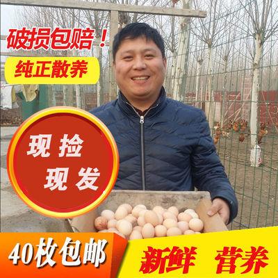 农家散养40-50克土鸡蛋新鲜柴鸡蛋草鸡蛋笨鸡蛋月子蛋40枚包邮