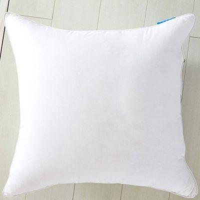抱枕芯靠垫芯沙发方垫芯长方形45 50 55 60 65正方形方枕芯可定制