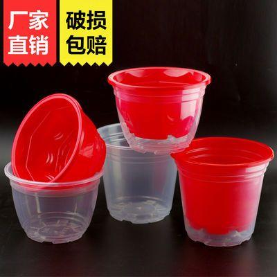 加厚高款塑料花盆绿萝专用室内透明水培懒人盆简约自动吸水储水盆