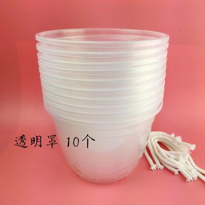 绿萝花盆塑料透明自动吸水懒人储水盆套接水培免浇水养蓄水底座厚