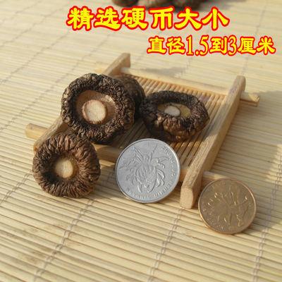 湖北香菇干货500g 野生椴木冬菇神农架农家土特产250g特级干香菇