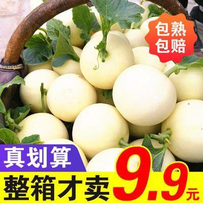 陕西阎良甜瓜现摘新鲜水果蜜瓜小香瓜非东方蜜羊角蜜瓜2-10斤