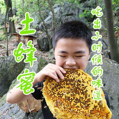 【保证是真蜜 不纯包退】2斤深山木桶土蜂蜜野生天然纯正送蜂巢蜜