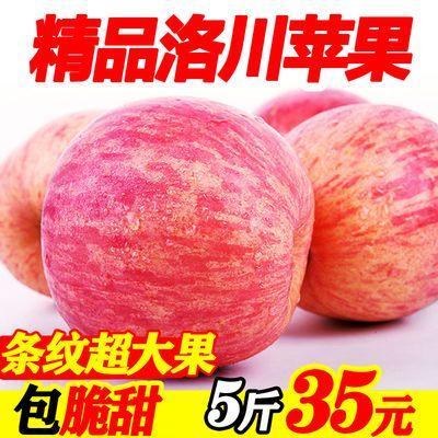 【精品】陕西正宗洛川红富士脆甜苹果新鲜水果孕妇5/10斤整箱批发