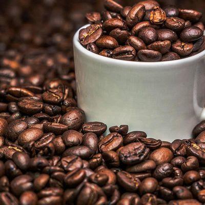 咖啡豆454g 印尼进口蓝山风味精选咖啡豆现烘焙中深度豆咖啡馆用