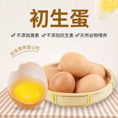 40枚初生蛋40g正宗山林散养土鸡蛋新鲜笨鸡蛋柴鸡蛋初生蛋10-60枚