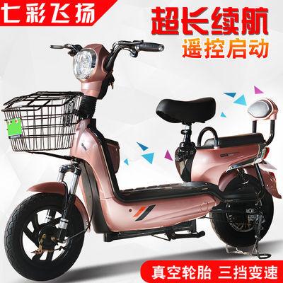 七彩飞扬电动车48V伏电瓶车长跑王电动自行车成人男女电动代步车