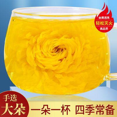 金丝皇菊一朵一杯菊花茶黄菊花胎菊罐装大朵花草茶可搭配枸杞玫瑰