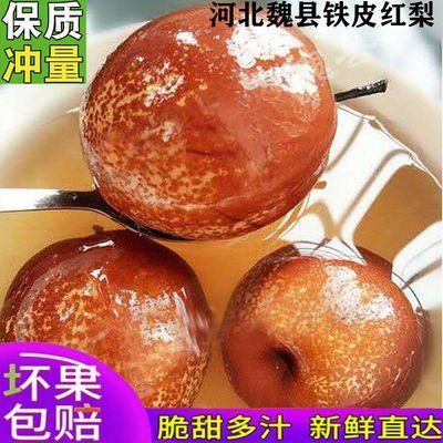花皮红梨鸭梨水果小红梨现摘现发皇冠梨冰糖梨新鲜梨子3斤5斤包邮