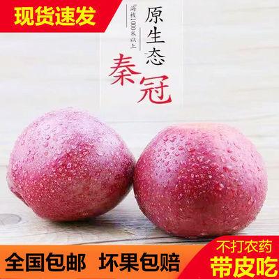 甘肃静宁老树秦冠苹果5/10斤新鲜野生丑水果粉面刮泥辅食非富士