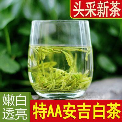 【安吉白茶明前特AA级】2020新茶珍惜茶叶全嫩芽珍稀绿茶罐装250g