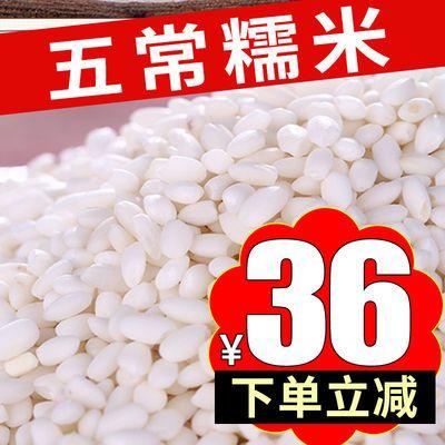 东北新糯米5斤圆粒江黏米包粽子酿酒熬粥粽子米五谷批发特价10/20