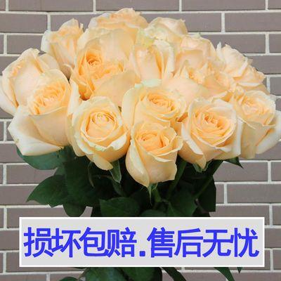 【基地直发】香水百合花鲜花批发云南真花家用玫瑰花向日葵小雏菊