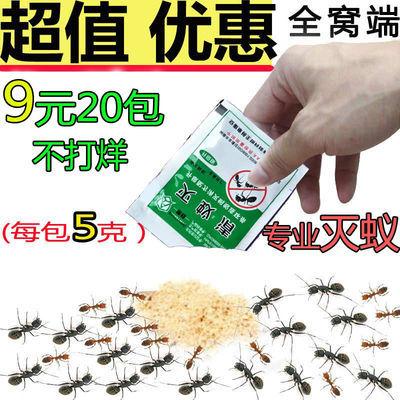 灭蚂蚁蟑螂药粉除蚂蚁饵剂家用无毒全窝端杀小红黄黑蚂蚁灭蚁清药