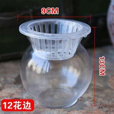 大号玻璃水培植物花瓶花盆透明恐龙蛋绿萝富贵竹水养鱼缸器皿容器