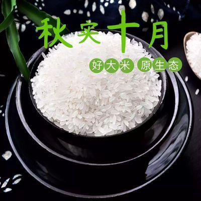 【秋实十月】2019年稻花香长粒香珍珠米圆粒米东北大米10斤20斤