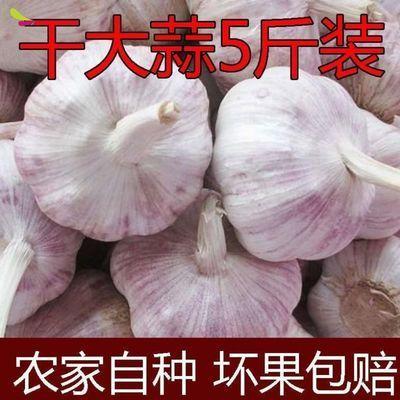https://t00img.yangkeduo.com/goods/images/2020-05-13/334035cab7c14fdfca846125736e3e17.jpeg