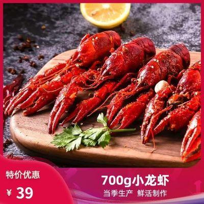 小龙虾麻辣小龙虾鲜活制作小龙虾蒜香小龙虾十三香小龙虾