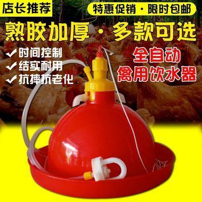 赚人气自动饮水器养殖养鸡设备用品鸡鸭鹅用喂水器鸡场喂鸡饮水壶