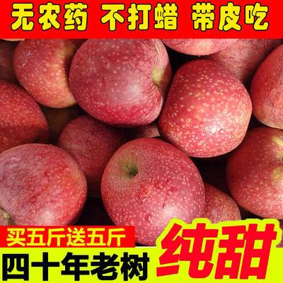 苹果水果10斤新鲜当季陕西秦冠甜粉面红富士冰糖心丑苹果整箱包邮