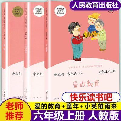 快乐读书吧六年级上册全套三本童年小英雄雨来爱的教育部编人教版