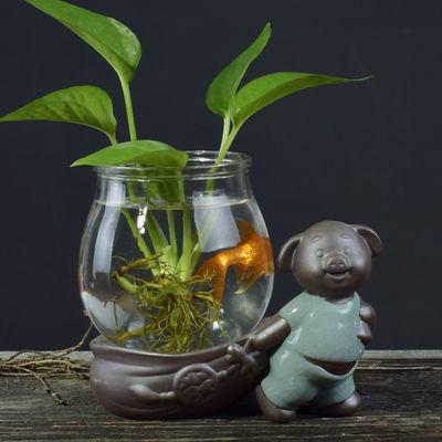绿萝花盆陶瓷铜钱草水培植物花瓶创意花器小和尚花插家居装饰摆件