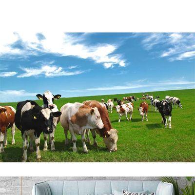 蒙古草原牛羊风景画壁纸蓝天白云牧场羊群牛群海报画贴墙壁画117