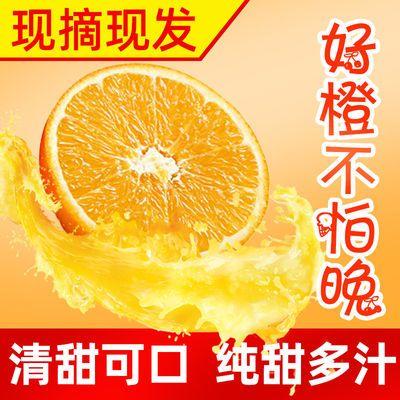 40108/正宗秭归夏橙 橙子新鲜现摘现发当季水果孕妇水果榨汁专用手剥橙